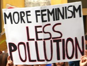"Cartello con su scritto ""More feminism Less pollution"""